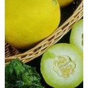 Melon  (Cucumis Melo) nasiona